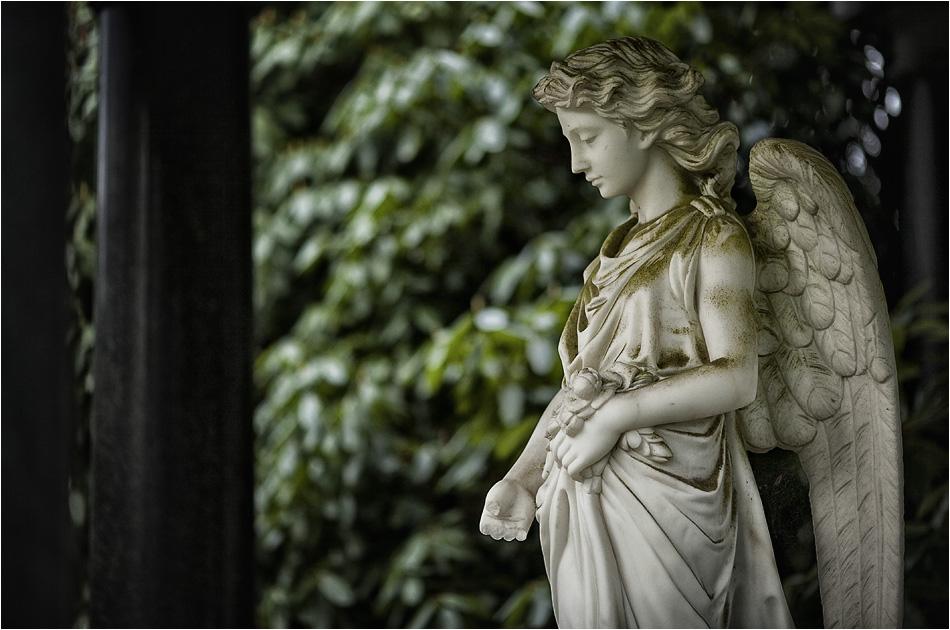 Engel – Friedhof Ohlsdorf