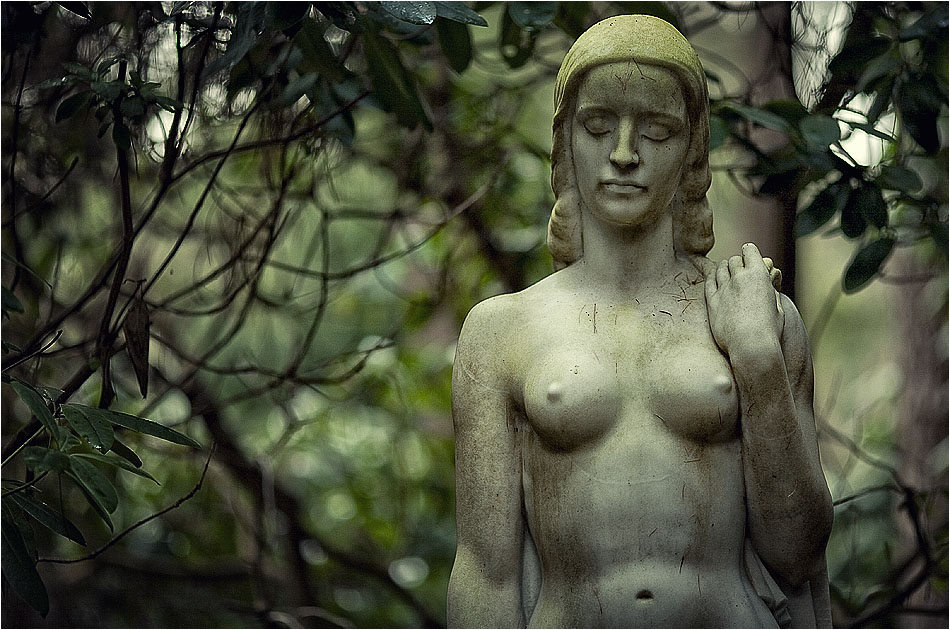 Karl Tuchardt – Friedhof Ohlsdorf