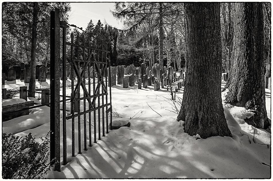 Jüdischer Friedhof Ohlsdorf — Michael Wassenberg