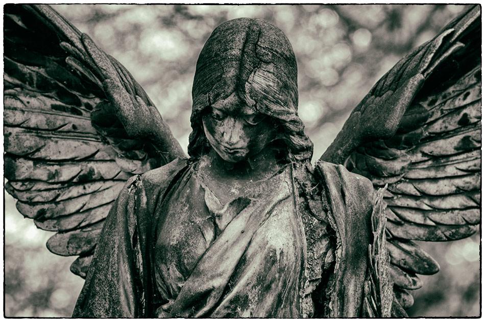 Engel — Friedhof Ohlsdorf — Michael Wassenberg