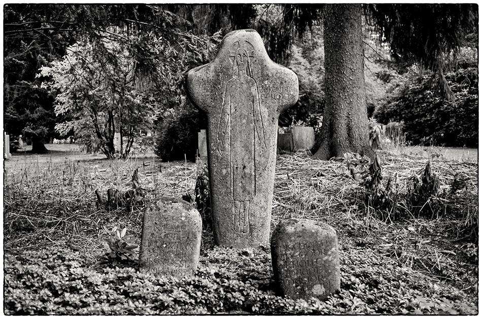 Grabmal Knolle · Friedhof Ohlsdorf · 2016-09-19