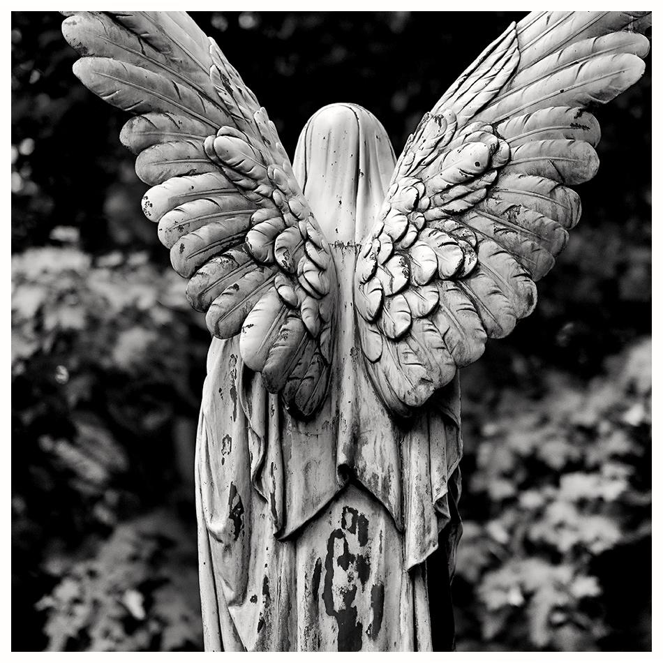 Grabmal Strantzen · Friedhof Ohlsdorf · Michael Wassenberg · 2016-08-07
