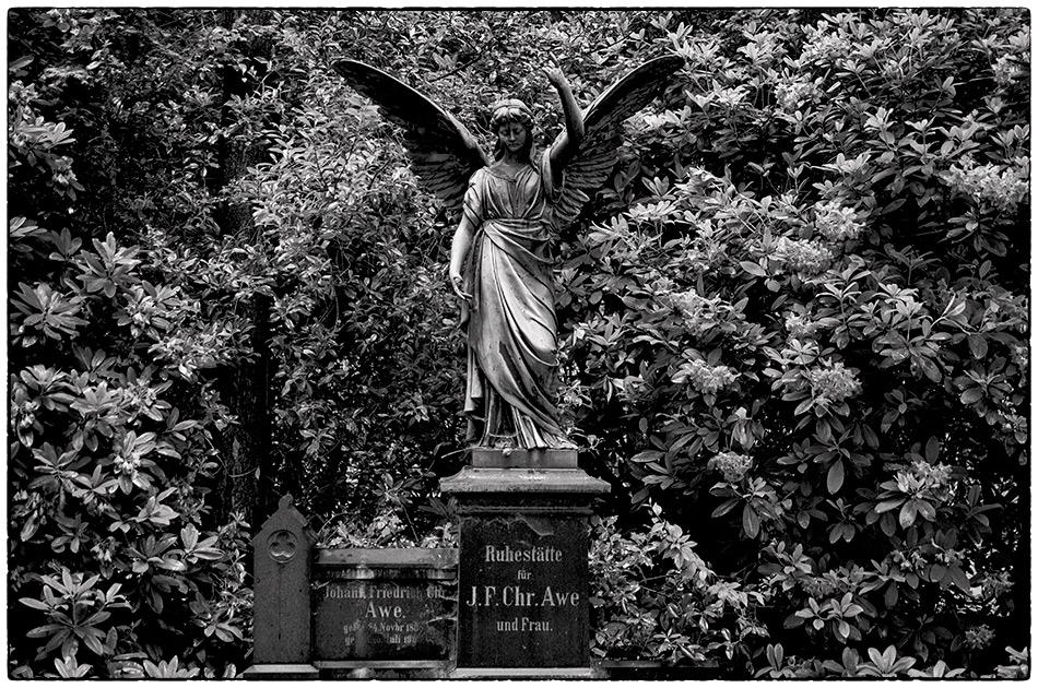 Grabmal Awe · Friedhof Ohlsdorf · Michael Wassenberg · 2017-06-04