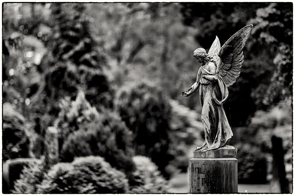 Grabmal Schülermann · Friedhof Ohlsdorf · Michael Wassenberg · 31.05.2019