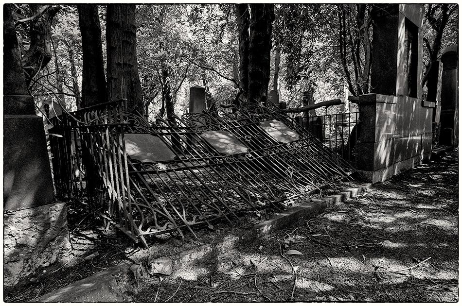 Jüdischer Friedhof Ohlsdorf · Michael Wassenberg · 19.07.2019